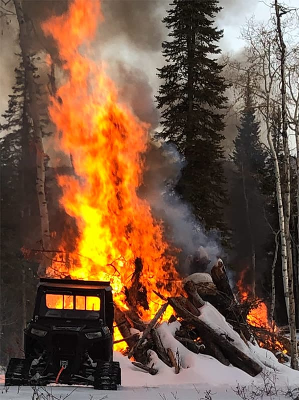 Fire for Forestry Reclamation